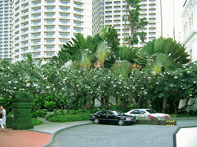 About Ownership of Executive Condominiums in Singapore